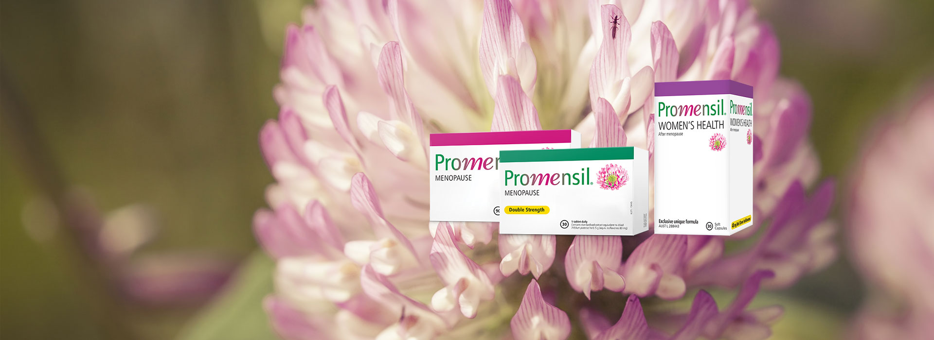 About Promensil